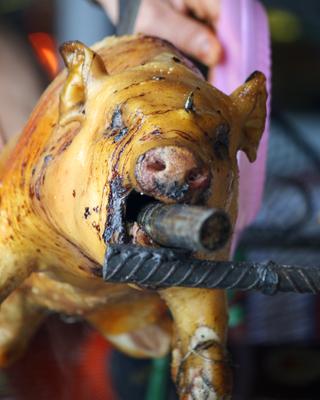 Streetside Pig Roast