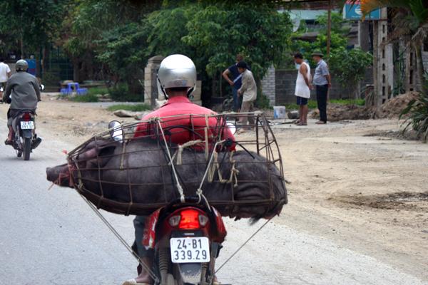 Vietnam 04 071